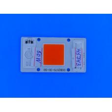 Матрица светодиодная Фито 50W 220V